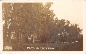 E35/ Rye Gate Montana Mt Real Photo RPPC Postcard 1914 Park Scene