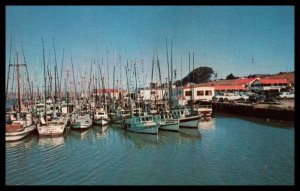 Fishing Boats,Bodega BaymCalfornia Shoreline