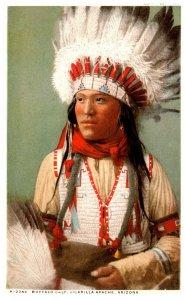 American Indian Buffalo Calf Jicarilla  Apache Arizona    ,  Reproduction