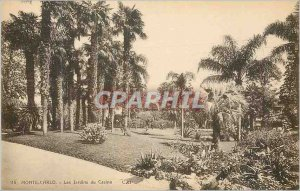 Old Postcard Monte Carlo Casino Gardens