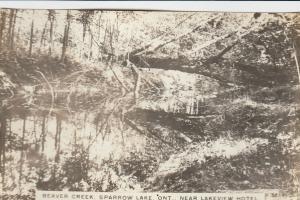 RP: SPARROW LAKE , Ontario , 1910s ; Beaver Creek Nr Lakeview Hotel