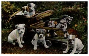 Dog Tuck's no.  8068 Bull Dog Puppies, Cart with Toy Pony