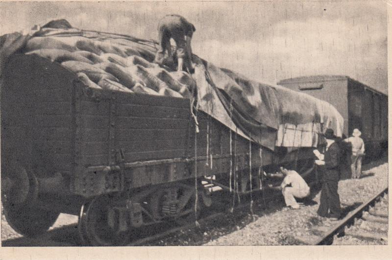 BRAZIL , 00-10s ; Inspecting a coffee train