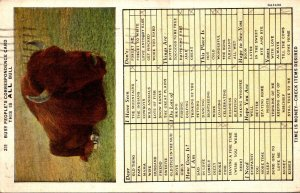 Humour Busy Person's Correspondence Card This Is All Bull 1933