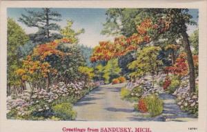 Michigan Greetings From Sandusky