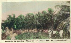 Haiti Port au Prince Plantation de Cocotiers Plaine cul de Sac RPPC 06.96