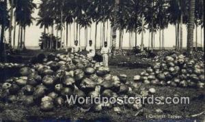 Malaya, Malaysia  Coconut Tapper Real Photo
