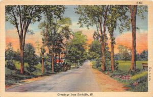 Earlville Illinois~Country Road Passing by Trees & Field~1938 Postcard