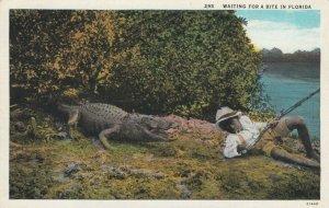 Alligator & Fishing Boy , Waiting for a bite , Florida , 1910-30s