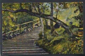 Scotland Postcard - The Steps To The Falls, Rouken Glen    T3737