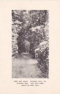 Virginia Hickory Hill Tree Box Walk Albertype