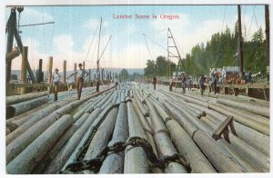 Lumber Scene In Oregon
