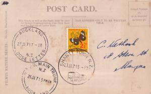 Shanty Town New Zealand Main Trunk Auckland WW1 Postmark Postcard