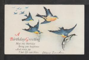 A Birthday Greeting,Bluebirds Postcard