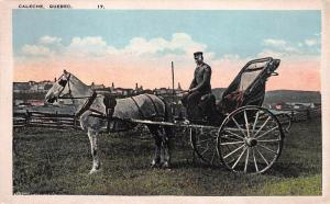 Horse, Carriage, and Driver, Caleche, Quebec, Canada, Early Postcard, Unused