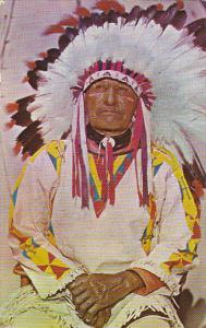 Western Indian Chief In Full Dress