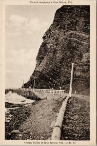 Gros Morne Quebec QC Sharp Corner Unused Vintage Postcard F2