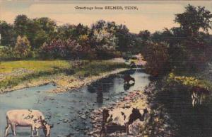 Tennessee Selmer Greetings From Selmer 1946