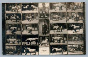 PHOENIXVILLE PA FIRE COMPANY TRAIN HORSES ANTIQUE REAL PHOTO POSTCARD RPPC