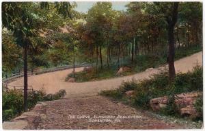 Scranton PA 1907-15 The Curve Elmhurst Boulevard Lackawanna Co RARE DB Postcard
