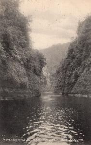 Manganui River New Zealand Wanganui Antique Postcard