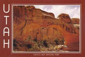 Utah Capitol Reef National Park Hickman Natural Bridge