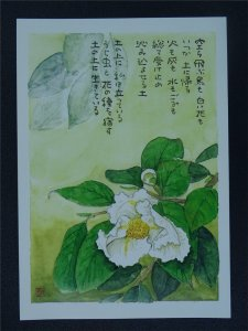 SUMMER CAMELLIA Paintings Poems by Japanese Disabled Artist Tomihiro Hoshino PC