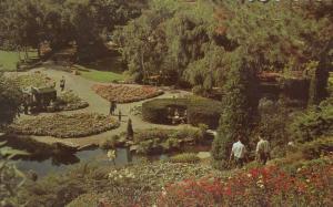 HAMILTON , Ontario , Canada , 1940-60s; Rock Garden, Royal Botanical Gardens