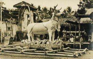 indonesia, BALI, Lembu Cremation Bull (1910s) RPPC Postcard