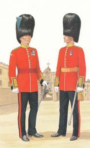 Field Officer Of Honour Irish Guard Military Postcard