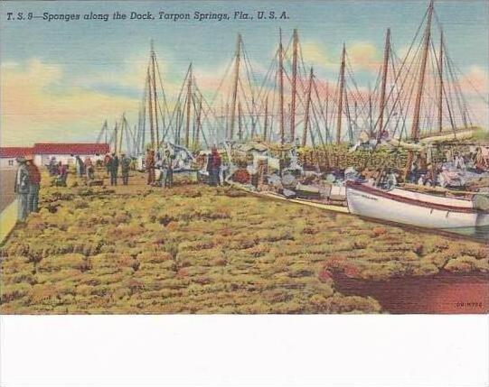Florida Tarpon Springs Sponges Along The Dock