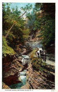 New York Watkins Glen Shadow Gorge Curteich
