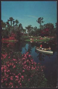 Cypress Gardens,FL Postcard BIN