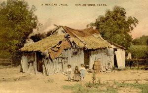 TX - San Antonio. A Mexican Jacal