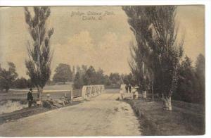 TOLEDO, Ohio, PU-1907; Bridge, Ottawa Park