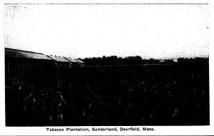 Massachusetts Old Deerfield Sunderland Tobacco Plantation