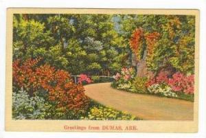 Beautiful Plants & Flowers, Greetings From DUMAS, Arkansas, PU-1942