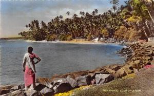 Ceylon Sri Lanka Palm Fringed Coast