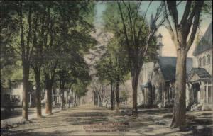 South Framingham MA Union Ave c1910 Postcard