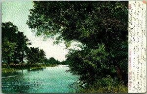 Vintage HOLLAND, Michigan Postcard BLACK RIVER A.C. Bosselman c1910s