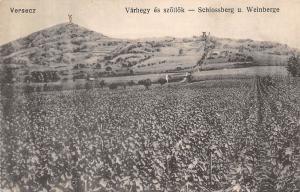 Serbia Versec Versecz Varhegy es szollok, Schlossberg u. Weinberge, Werschetz