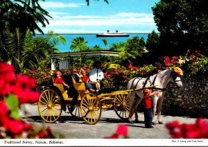 Bahamas Nassau Traditional Horse Drawn Surrey Sightseeing Carriage