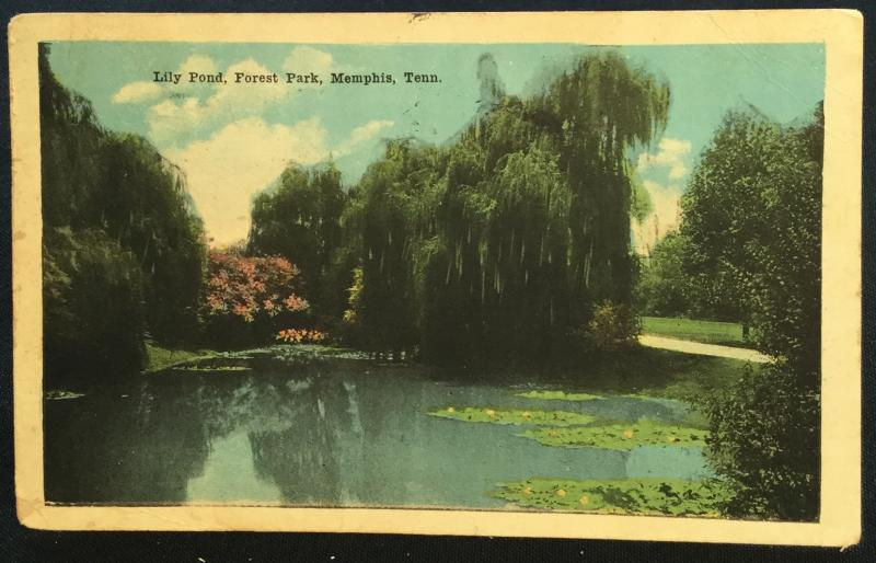 Postcard Used Lily Pond Forest Park Memphis TN LB