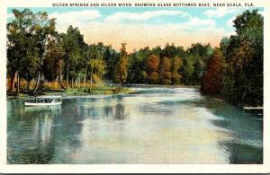 Florida Silver Springs Glass Bottom Boat Curteich