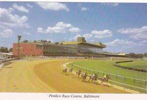 Horse, The Pimlico Race Course, Baltimore, Maryland, 50-70s