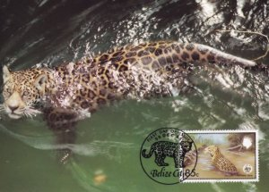 Belize Jaguar Swimming WWF Stamp First Day Cover Postcard