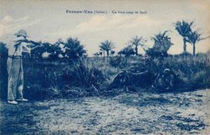 Un Beau Coup De Fusil, Fernan-Vaz, Gabon, Africa, 1900-1910s