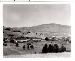 Haynes 39036, Mammoth Hot Springs Hotel, Yellowstone National Park