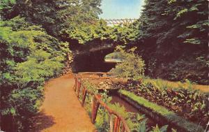 Netherlands Apeldoorn Tunnel Berg en Bos Pont Bridge