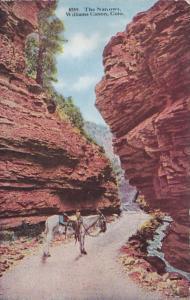 Colorado The Narrows Williams Canon